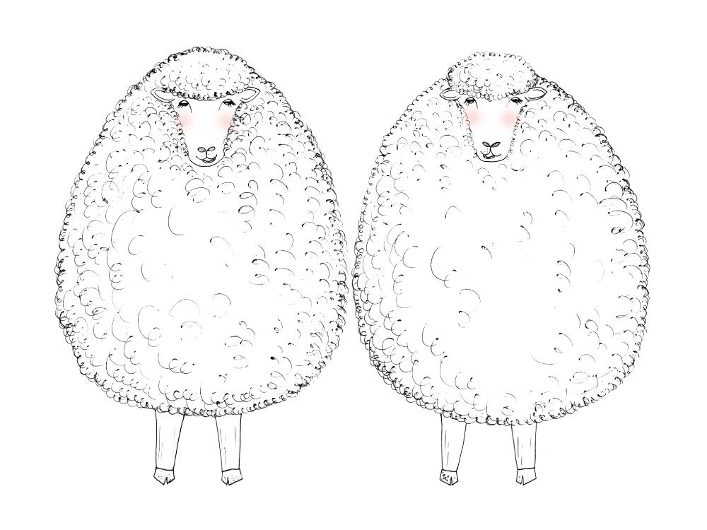 pompette-sheep-duo